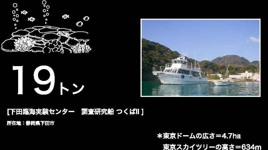 19トン [下田臨海実験センター 調査研究船 つくばII ] 所在地:静岡県下田市 *東京ドームの広さ=4.7ha 東京スカイツリーの高さ=634m